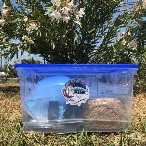 Kit de cultivo S